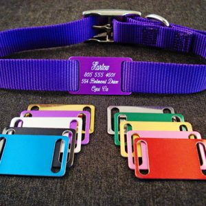 slide-on nameplates for pet collars - assorted colors