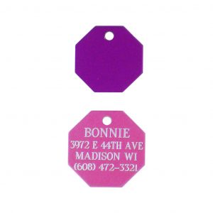 Engraved Octagon Pet Tag