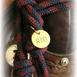 "1"" ro;und lacquered brass tack tag"